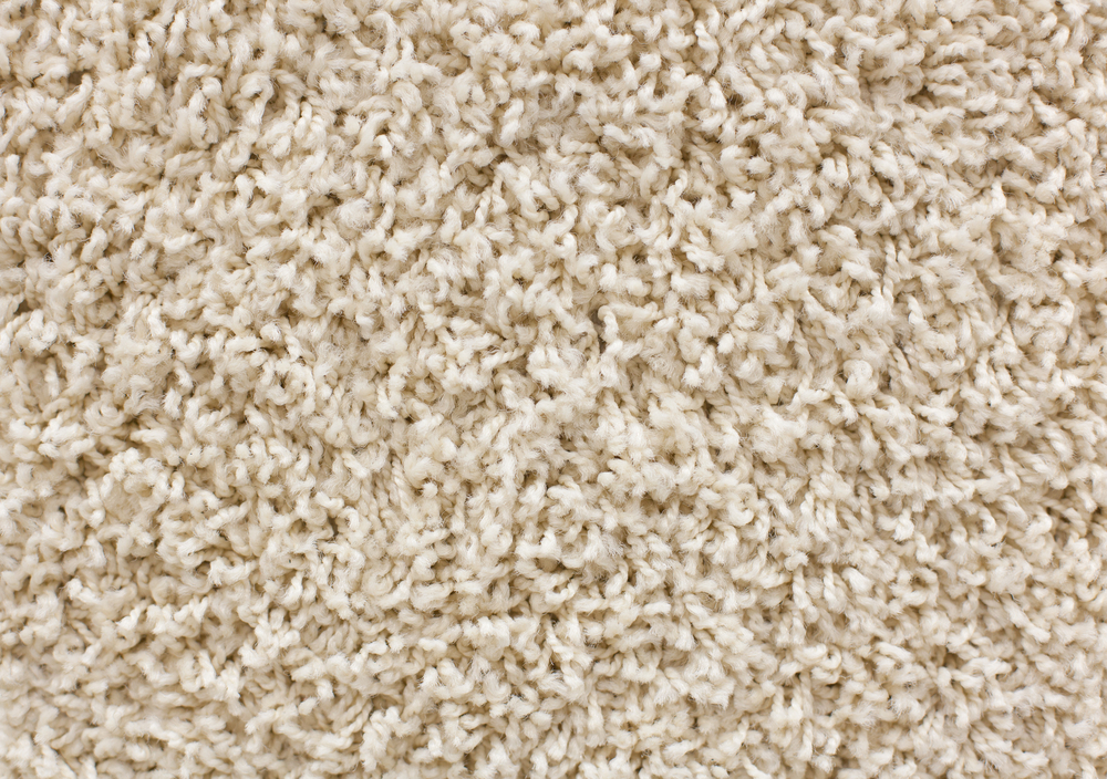 Middletown nylon wool carpet
